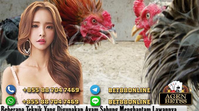 AyamS128 WIN