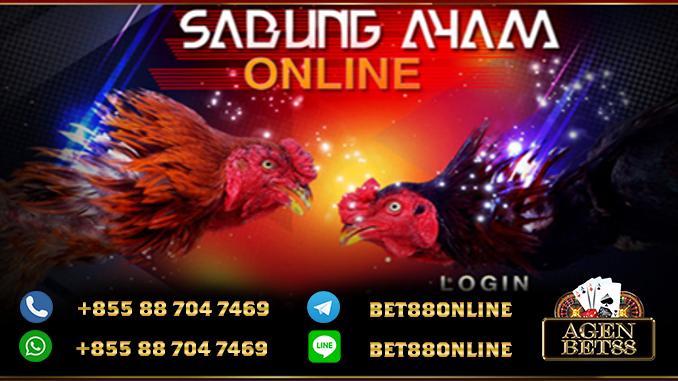 Login-AyamS128